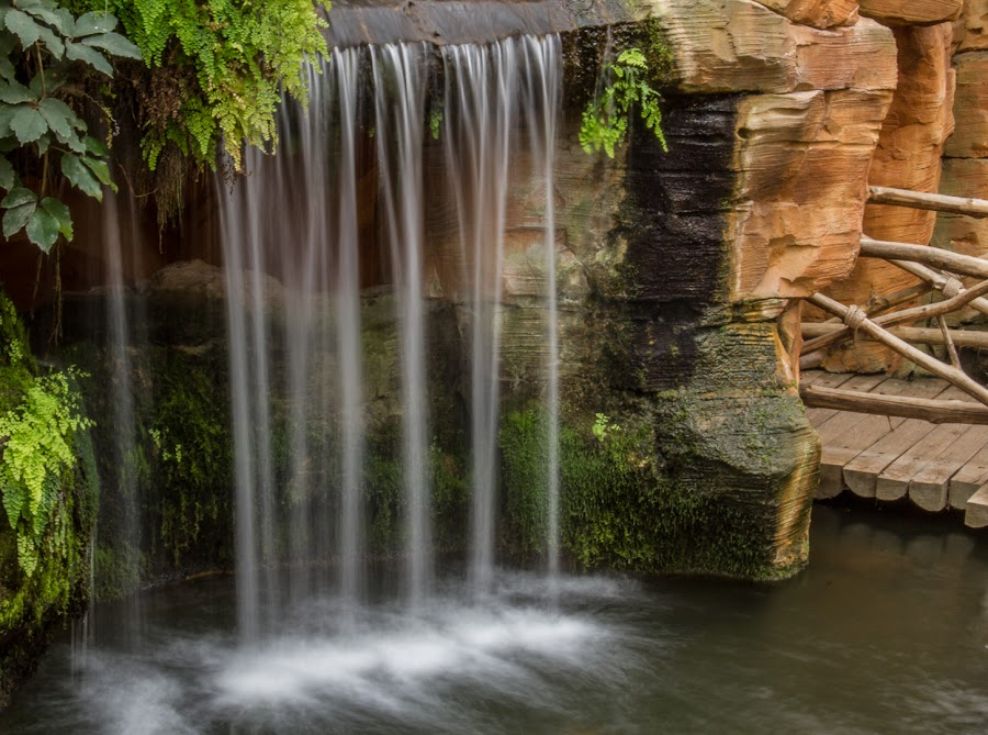Waterfall by Arti Fakts - Landscapes Waterscapes ( water, exposure, warm, jungle, green, waterfall, longtime, humid, artifakts,  )