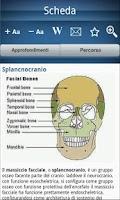 Screenshot of Encyclopedia of anatomy