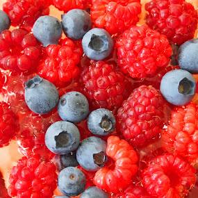 Berries by Name of Rose - Food & Drink Fruits & Vegetables ( fruit, fruits, blueberries, garden, raspberries, berries )
