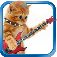 Dancing and Singing Funny Pets 1.0.6