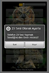 Kuş sesi - screenshot thumbnail
