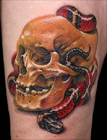 TATTO 3D AND CREATOR