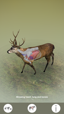 Animal vitals for hunters - screenshot