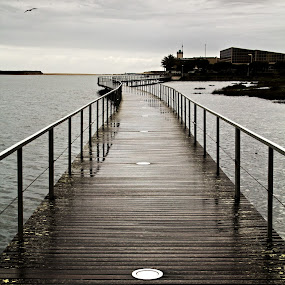Still waters by Júlio Alves - Buildings & Architecture Bridges & Suspended Structures ( curve, ponte, chuva, braga, esposende, bridge, gray, portugal, minho, rain, cávado, river )