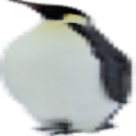 Penguin Tracker logo