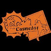 Camelot Handbal