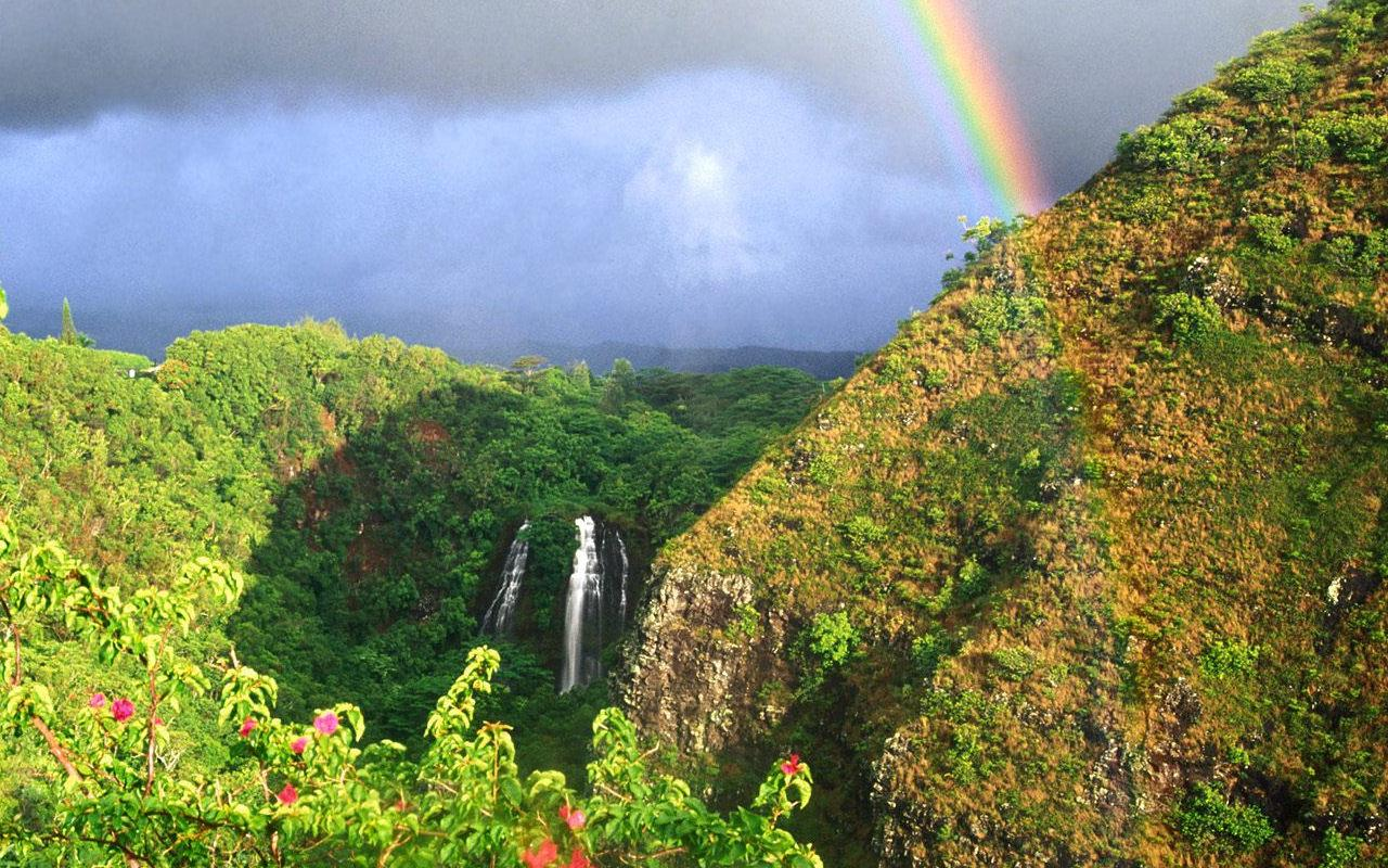 rainbow jigsaw puzzles android apps on google play