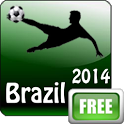 Brazil 2014 World Cup icon