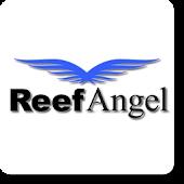 Reef Angel Status