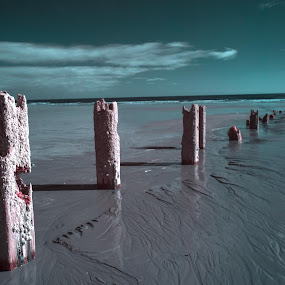 Groynes in Infrared by John Holmes - Landscapes Beaches ( abstract, clouds, sand, wood, groynes, infrared, faux colour, beach )