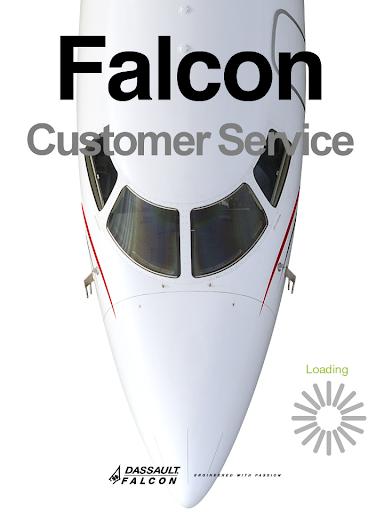 Falcon Customer Service