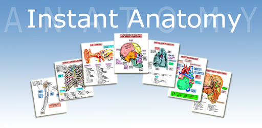 Anatomy Lectures - Apps on Google Play
