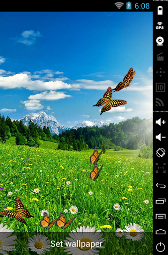 Butterfly 3D LiveWallpaper