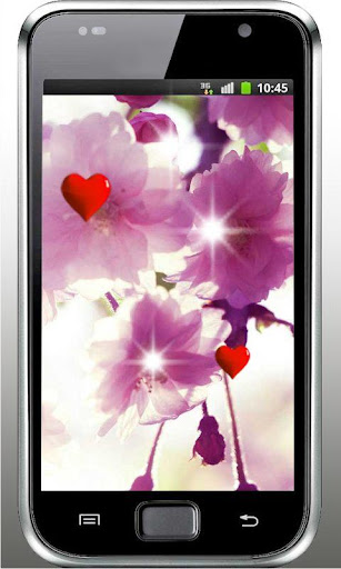 Sakura Love HD live wallpaper