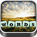 Words in a Pic icon