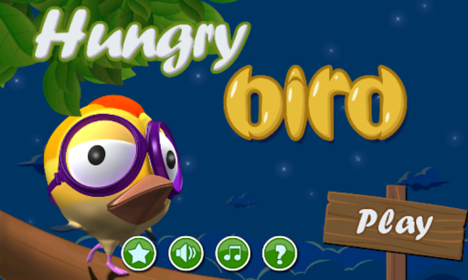Hungry Bird - New Free Game