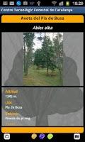 Screenshot of Guia d'arbres i arbredes