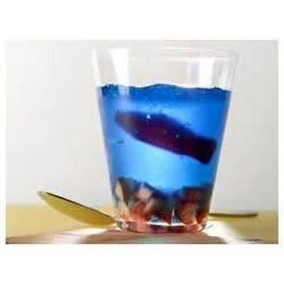 Aquarium Cups