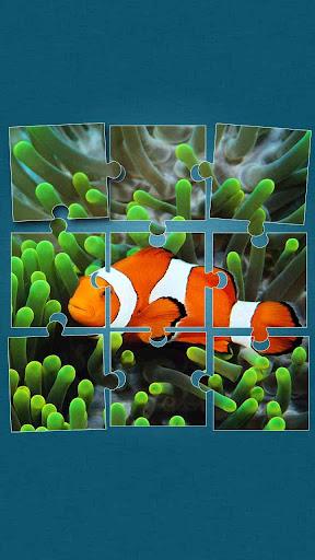 海洋世界 拼圖 - 海洋動物 的益智遊戲