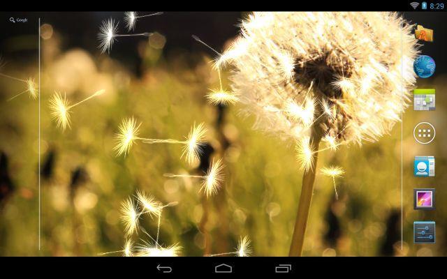 Dandelion Live Wallpaper - screenshot