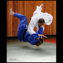 Judo illustrated icon