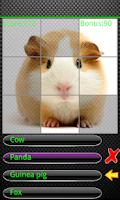 Screenshot of Kids Animal Quiz Pro