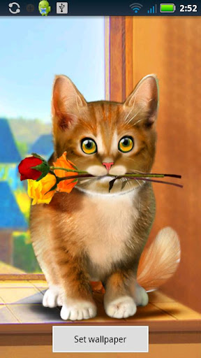 Valentine Cat Live Wallpaper