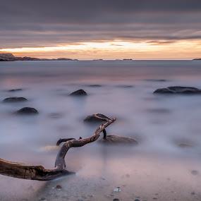 A new day by Magnus Østebrød - Landscapes Sunsets & Sunrises ( sony, sunset, norway,  )