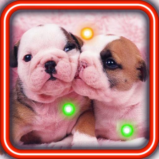 Lovely Puppies live wallpaper 個人化 App LOGO-硬是要APP