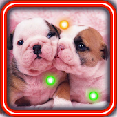 Lovely Puppies live wallpaper