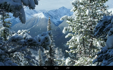 Winter Wallpaper screenshot 4