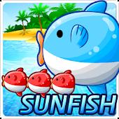 Sunfish Mania