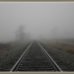 Into The Unknown by Regina Watkins - Landscapes Weather ( fog tracks unknown,  )