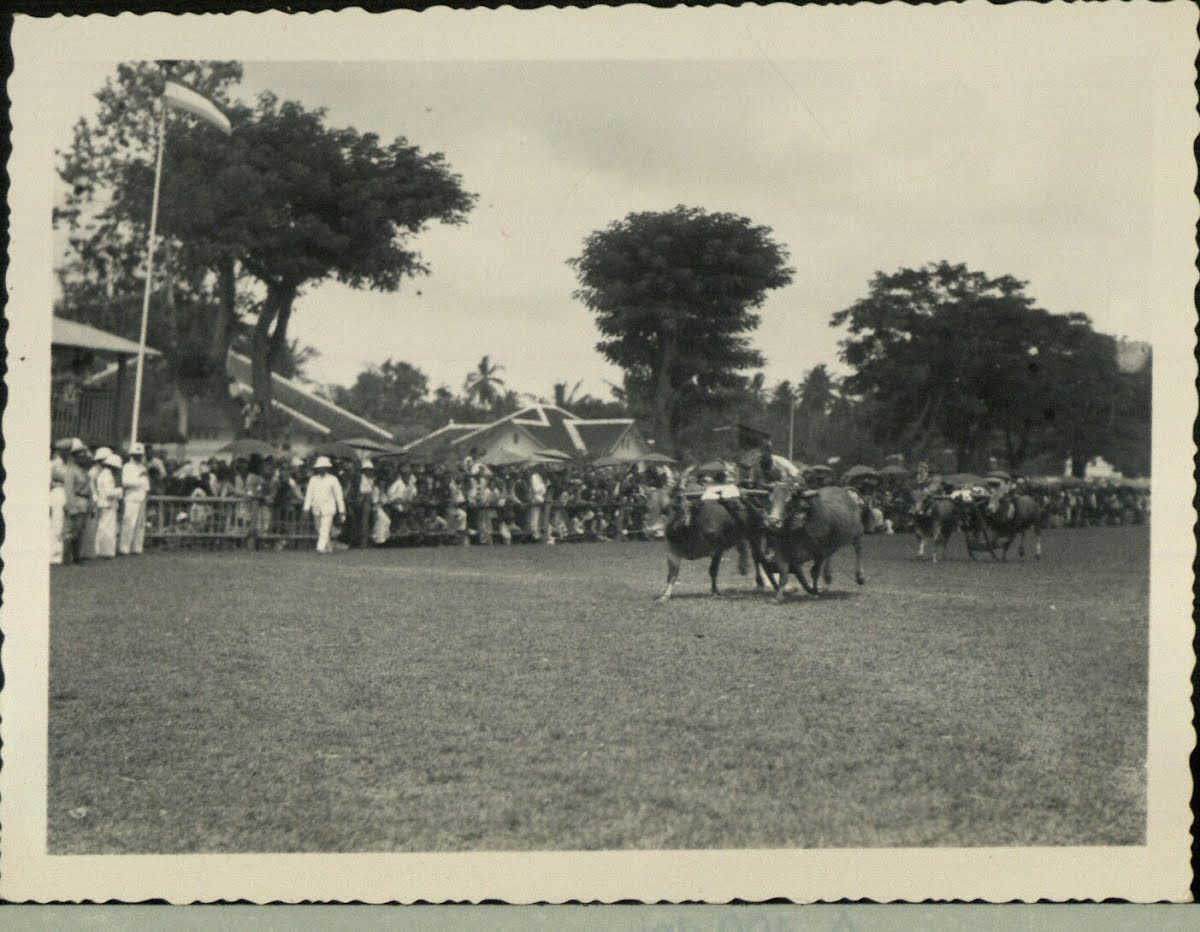 Dutch East Indies Java Bull Racing