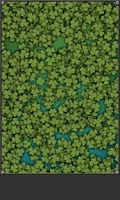Screenshot of Find Lucky Clover