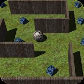 Gyro Maze
