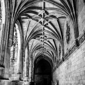 Santiago Cathedral Cloisters by Justin Murazzo - Buildings & Architecture Architectural Detail ( doors, old, hall, gothic, arch, stone, pilgrams, door, architecture, travel, rustic, spain, city, open, buildings, walkway, ceilings, light, black, spanish, memorial, church, colonnade, cloister, white, grave, tourism, trek, galacia, ceiling, column, santiago, cathedral, day, archway, hallway, walk, outside, tomb, brick, moss, beauty, entrance, manmade, pilgrim, pilgrimage, end, building, vertical lines, beautiful, scenic, gray, catholic, pwc, camino, pillar, historical, santiago de compostela,  )