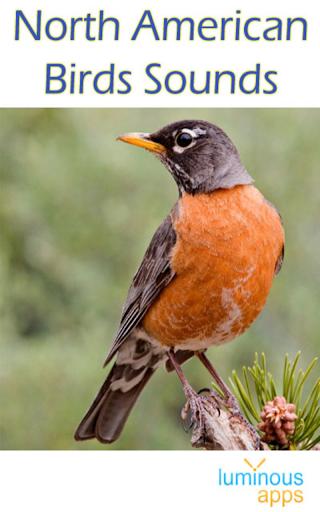 North American Birds Free 4.1 app download 1
