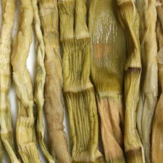 Bamboo Shoot Salad Recipes.