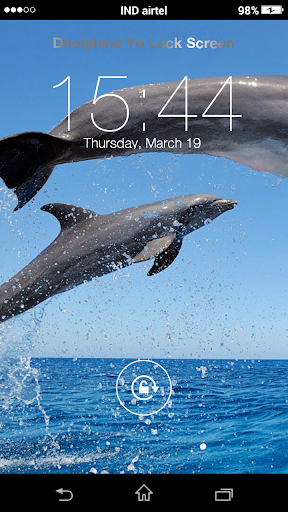 Dolphin Yo Locker HD