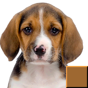 Dog & Puppy Puzzles Ad-Free