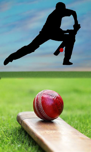 クリケットは 2016年に一致します。