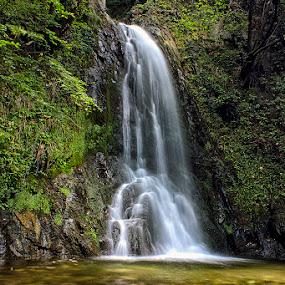 waterfall by Naiden Bochev - Nature Up Close Water ( water, nature, waterscape, waterfall, forest )