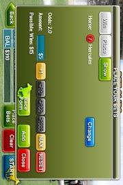 Virtual Horse Racing 3D Screenshot 4