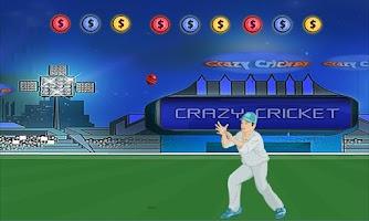 Screenshot of Crazy Cricket