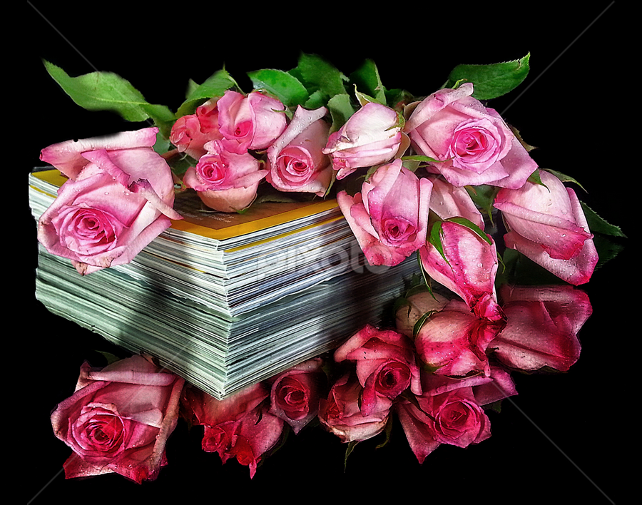by Dipali S - Instagram & Mobile Android ( bouquet, books, android, nature, flora, roses, pink, andrography, flower )