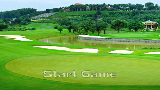 Golf 3D Mini Pro