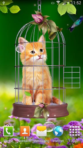 Cat and Hummingbirds Wallpaper