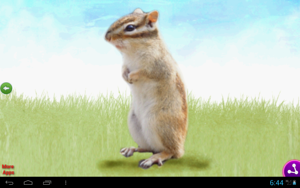 Animal Toddler For Kids FREE Android Apps On Google Play