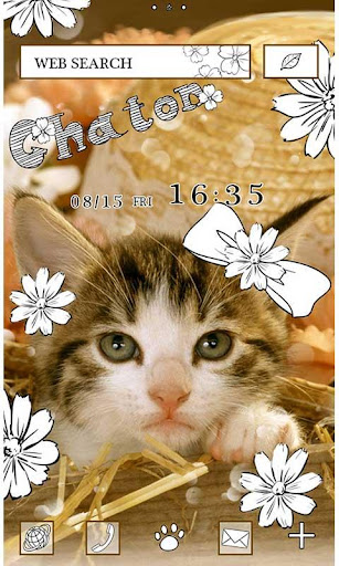 Cat Wallpaper Chaton 1.1 Windows u7528 1